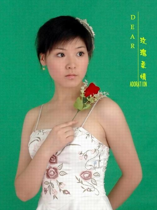桐城市黄梅戏剧团汪林林