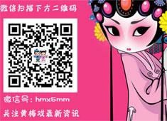 黄梅戏5网安徽梅之梦黄梅戏演出公司简介