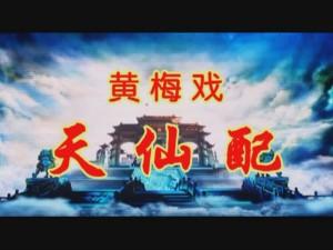 视频:省黄梅戏剧院的袁媛和梅院军的《天仙配》完整版