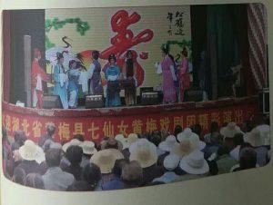 湖北七仙女黄梅戏演出公司