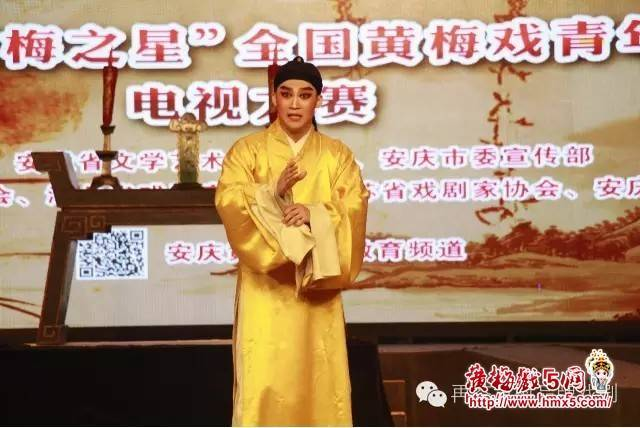 第五届黄梅之星大赛再芬黄梅黄梅戏剧院黄梅戏演员王泽熙